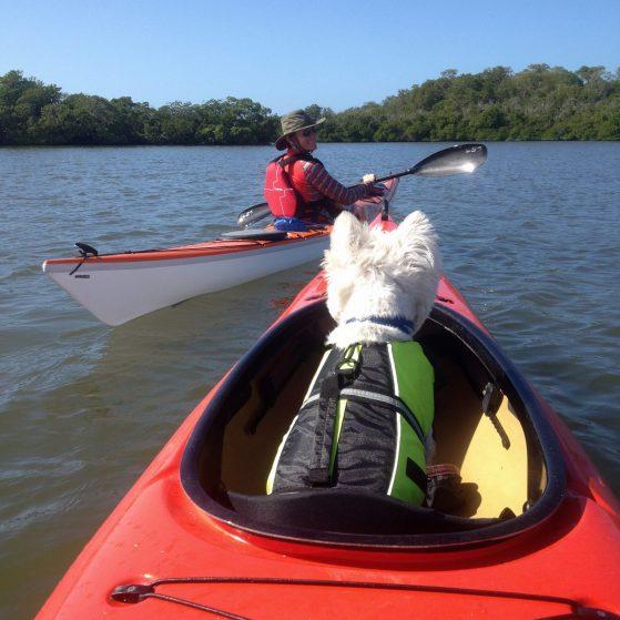 Welcome - Performance Kayak